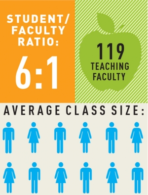 Facultybynumbers